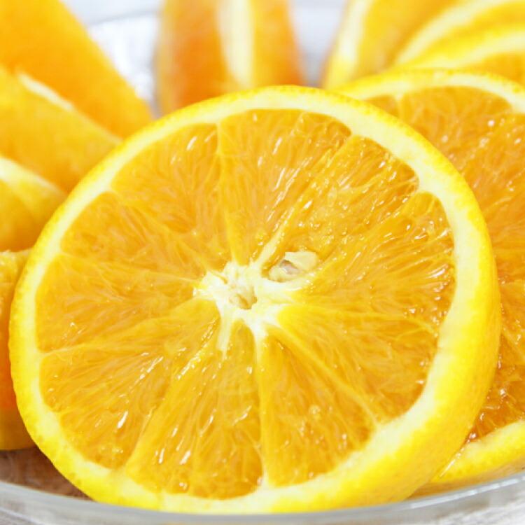 和歌山県串本町 【ふるさと納税】【国産 訳あり】希少 バレンシアオレンジ 7kg【ご家庭用】