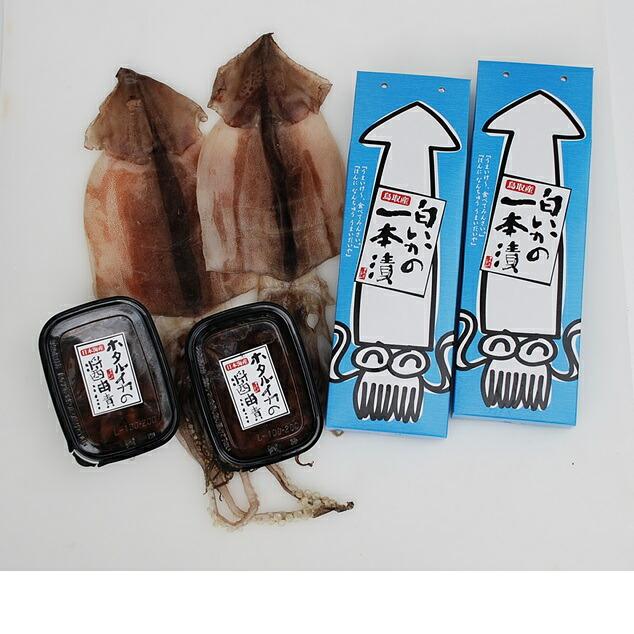 鳥取県 【ふるさと納税】白いか・ホタルイカ醤油漬と甘塩干しスルメセット