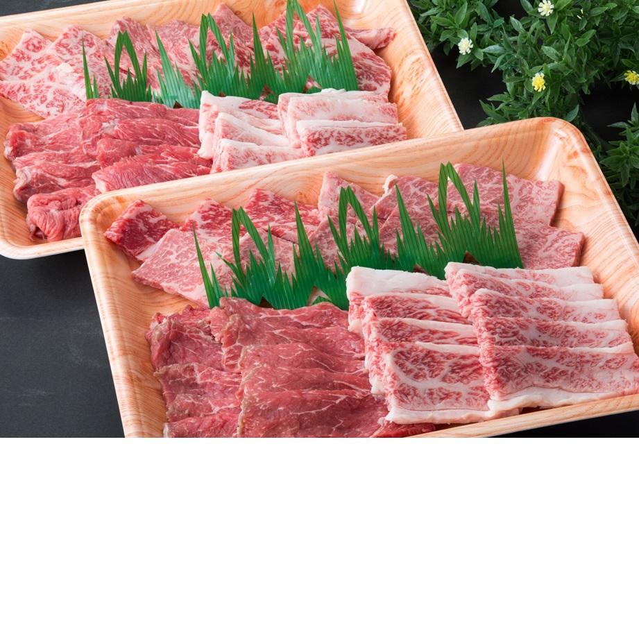 鳥取県 【ふるさと納税】【肉質日本一!】鳥取和牛 特上焼肉セット