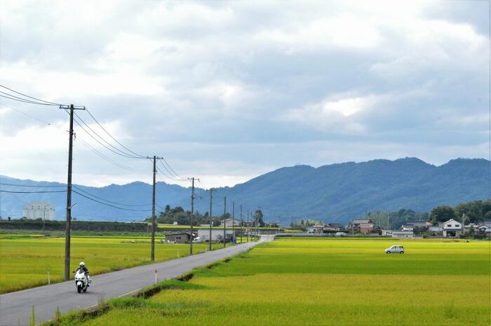 八頭町の風景