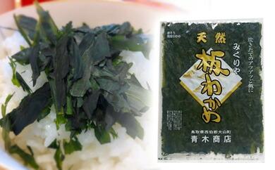 鳥取県大山町 【ふるさと納税】MS-104 天然板わかめ(60g)【4月以降発送】