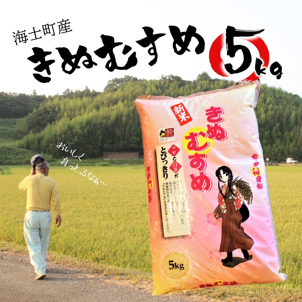 島根県海士町 【ふるさと納税】令和2年度産 米 きぬむすめ 5kg 2020年産 お米