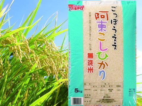 山口県山口市 30E-023【ふるさと納税】 阿東こしひかり(無洗米)5kg