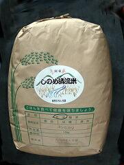 山口県山口市 30E-018【ふるさと納税】しのめ清流米 玄米10kg