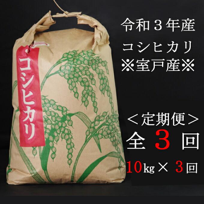 高知県室戸市 【ふるさと納税】米 定期便 10kg 新米コシヒカリ 10kg×3ヶ月 白...