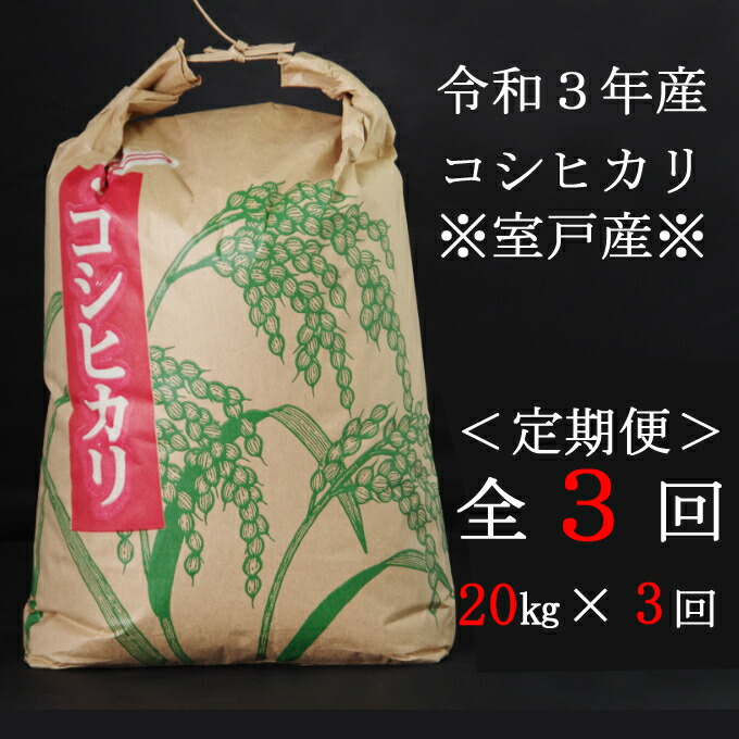 高知県室戸市 【ふるさと納税】米 定期便 20kg 新米コシヒカリ 20kg×3ヶ月 白...