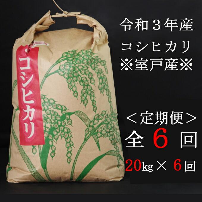 高知県室戸市 【ふるさと納税】米 定期便 20kg 新米コシヒカリ 20kg×6ヶ月 白...