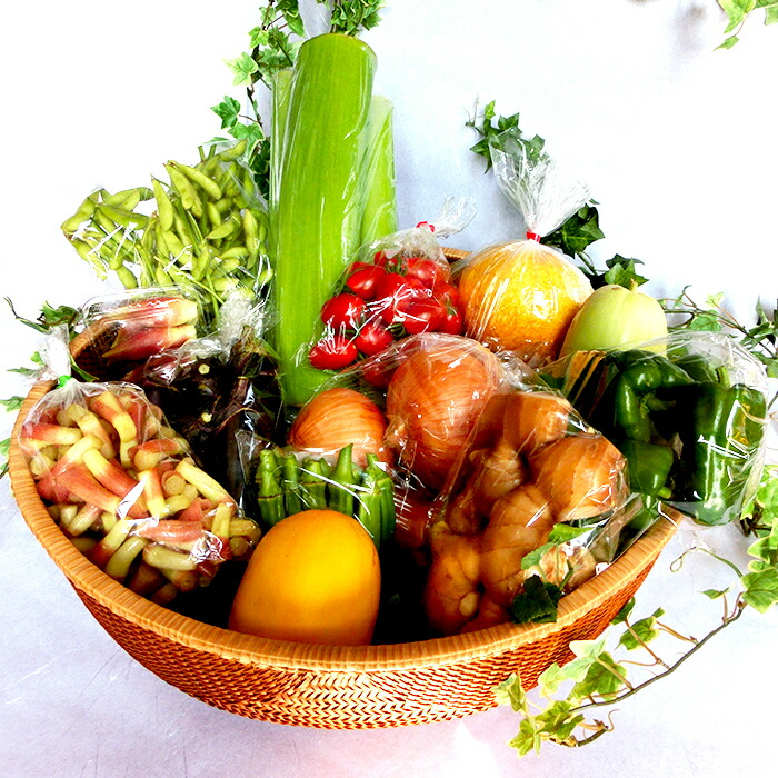高知県須崎市 【ふるさと納税】高知県須崎市産!旬の野菜・果物セット