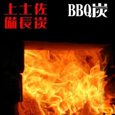 高知県東洋町 【ふるさと納税】S162 BBQ炭 20kgセット(多用途炭)