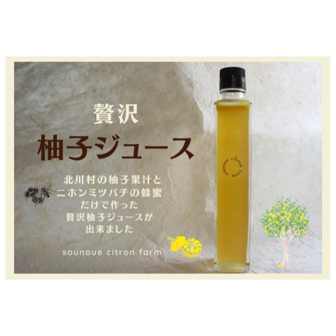 高知県北川村 【ふるさと納税】ゆずジュース(希釈)200ml/sounoue citro...