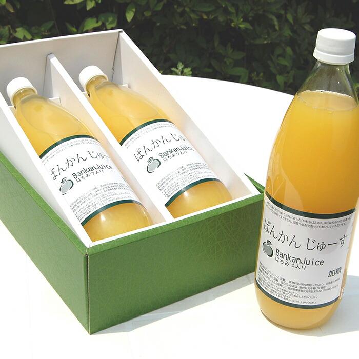 高知県大月町 【ふるさと納税】柑橘「河内ばんかん」果汁と蜂蜜だけで作ったジュース2本セット