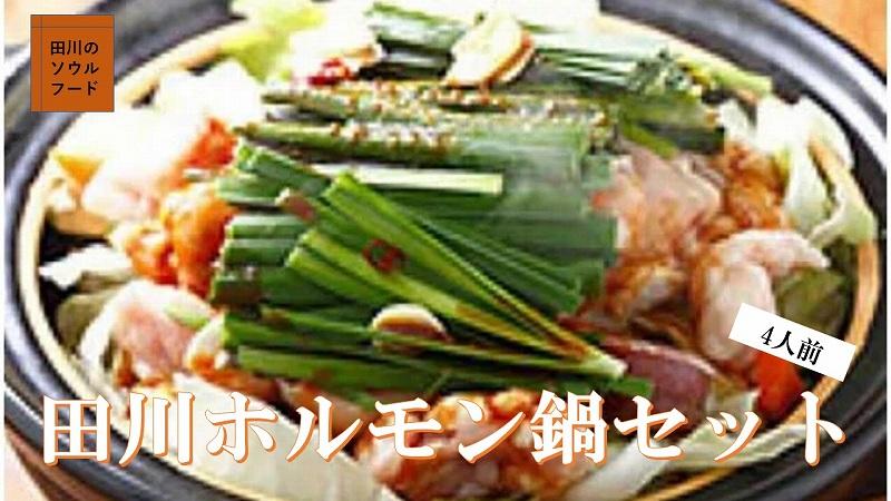 (2)田川ホルモン鍋セット(4人前程度)【ご自宅用】