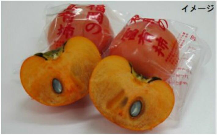 福岡県うきは市 【ふるさと納税】伊藤園 冷蔵富有柿 (Lサイズ)3キロ箱