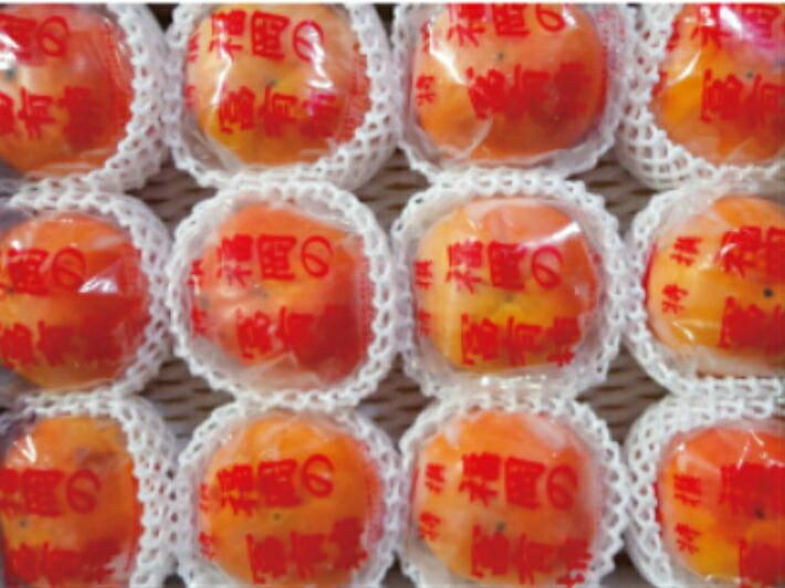 福岡県うきは市 【ふるさと納税】 道の駅うきは 冷蔵富有柿 5キロ箱
