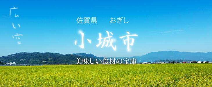 佐賀県小城市(おぎし)楽天ふるさと納税サイト