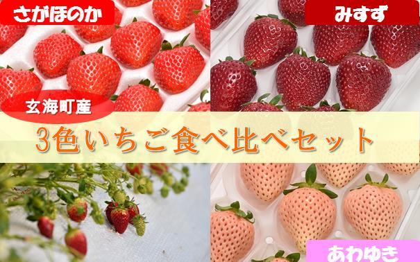 佐賀県玄海町 【ふるさと納税】3色いちご食べ比べセット