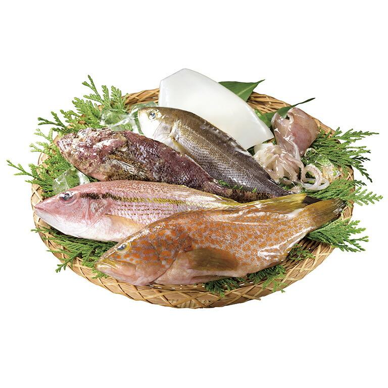長崎県平戸市 【ふるさと納税】平戸市場直送!獲れたて鮮魚(冷蔵)