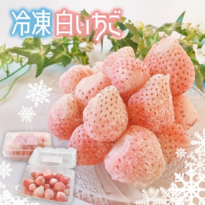 【ふるさと納税】【冷凍】白いちご「淡雪」(大小混合2400g)