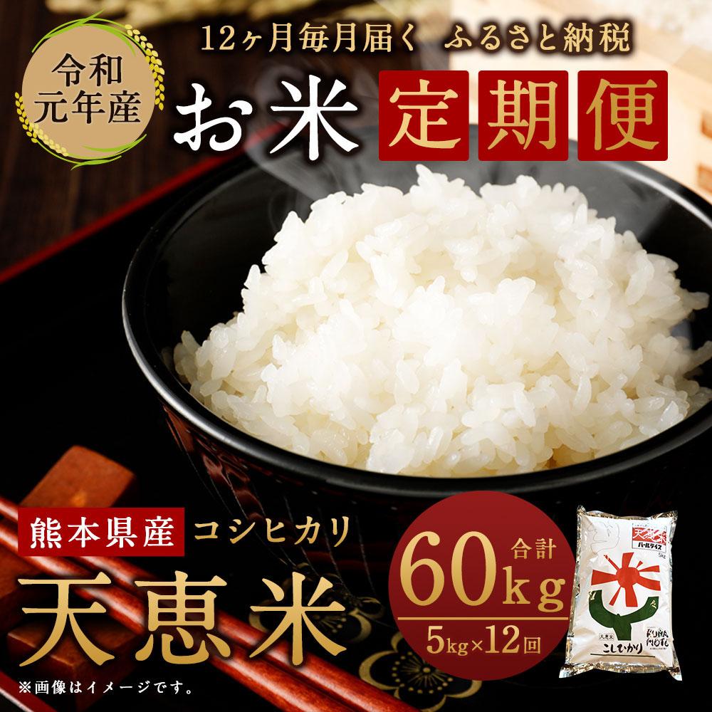 天恵米 コシヒカリ 米 5kg×12回