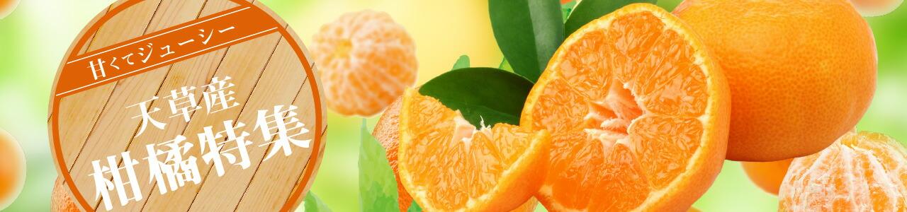 天草産 ~ 柑橘特集 ~