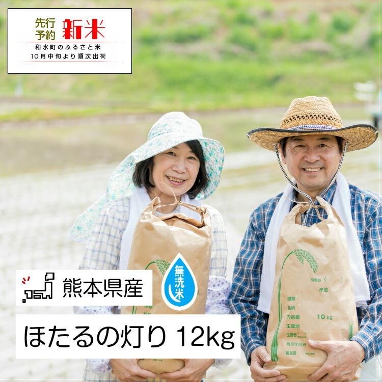 熊本県和水町 【ふるさと納税】無洗米「ほたるの灯り」 熊本県なごみ町産 12kg