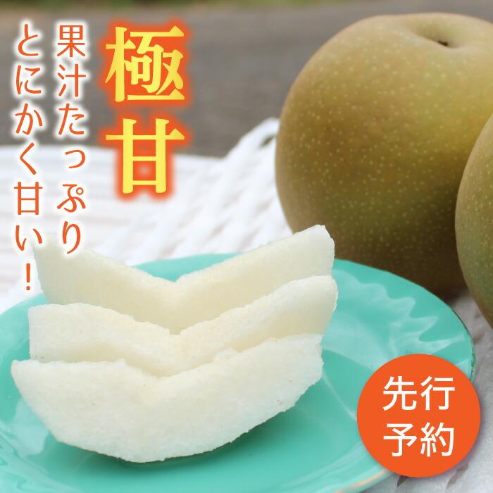 新品種梨 極あまっ!キング甘太 (約3kg)