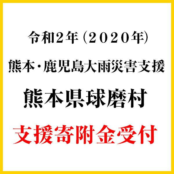 《令和2年熊本・鹿児島大雨災害支援緊急寄附受付》熊本県球磨村災害応援寄附金(返礼品はございません)
