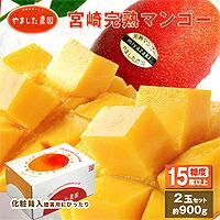 【ふるさと納税】【やました農園】宮崎完熟マンゴー2Lサイズ2個入りセットAE-B1