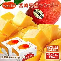 【ふるさと納税】【やました農園】宮崎完熟マンゴー贈答用(4L×2玉入)2箱セットAE-D1