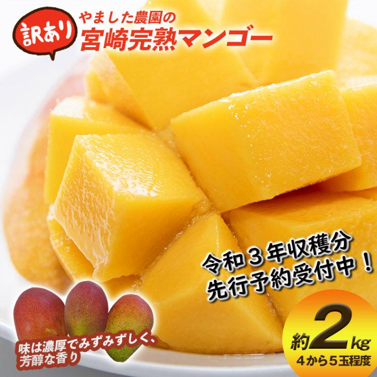 先行予約】【やました農園】宮崎完熟マンゴー訳ありB級品 約2kg