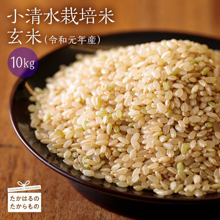 【ふるさと納税】杜の穂倉 『小清水栽培米』(玄米 [10kg])