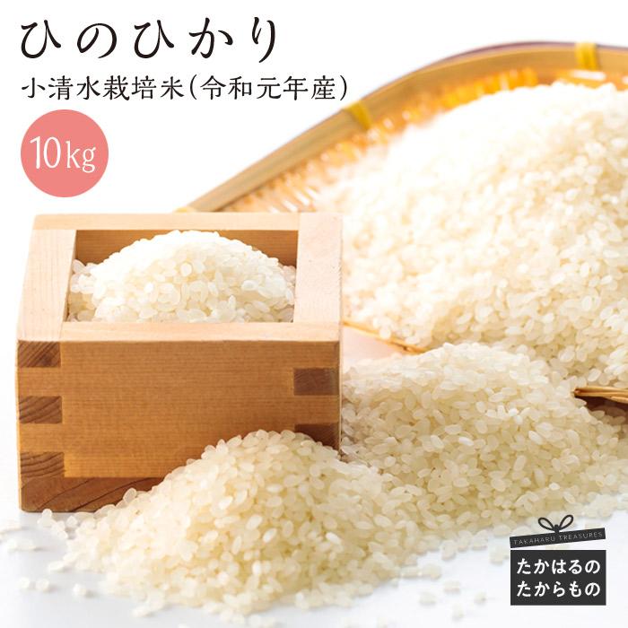 【ふるさと納税】宮崎県産令和元年産 小清水米10kg ひのひかり