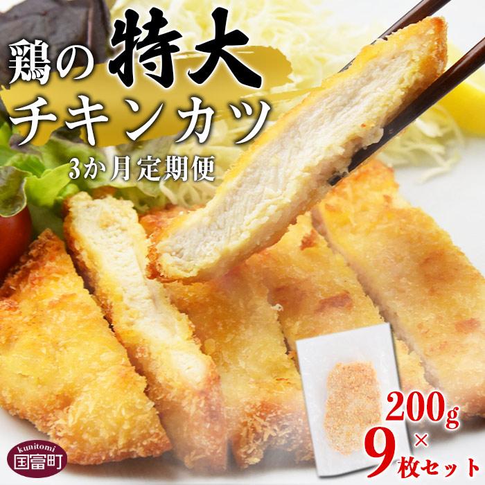 宮崎県産 鶏の特大チキンカツ9枚セット 3か月定期便