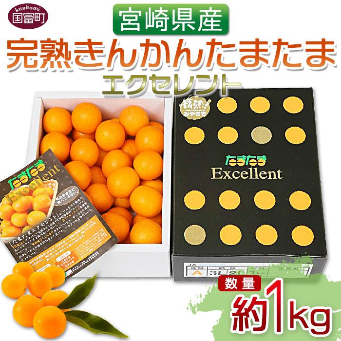 宮崎県産完熟きんかん たまたまエクセレント(約1kg)