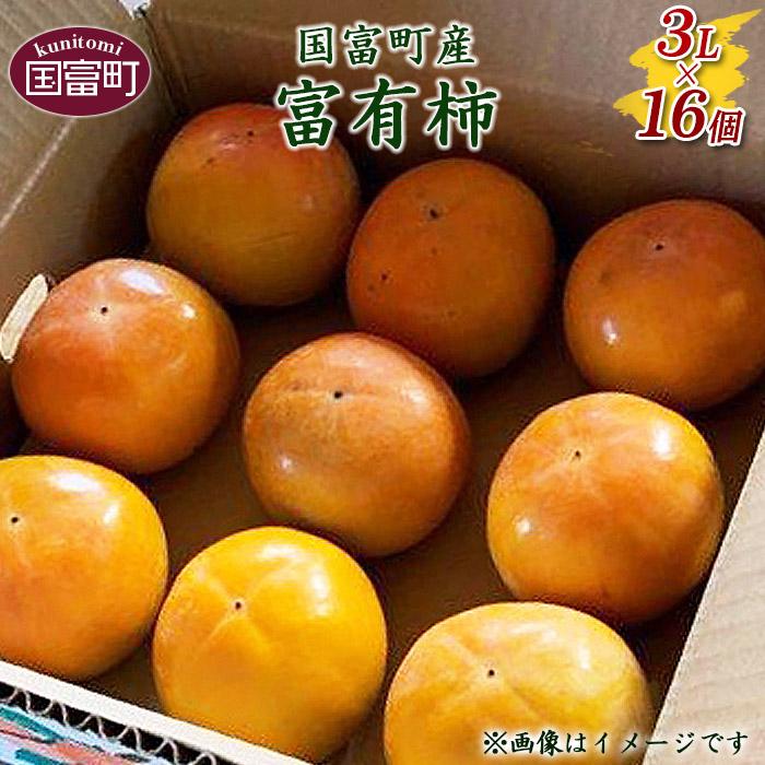国富町産 富有柿 3L×16個