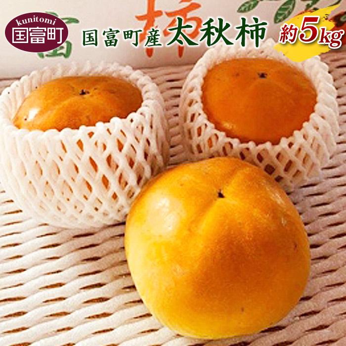 国富町産 太秋柿 約5kg