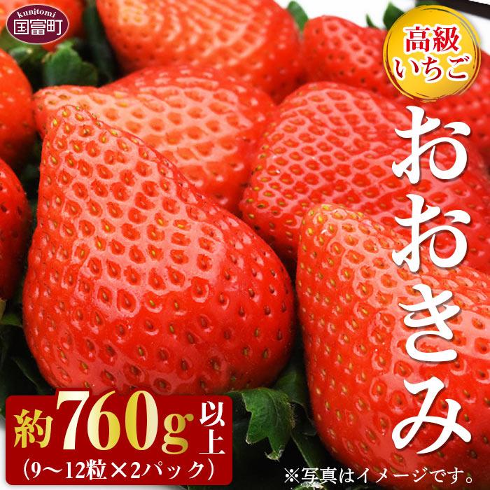 高級いちご「おおきみ」(9~12粒×2パック 合計約760g以上)