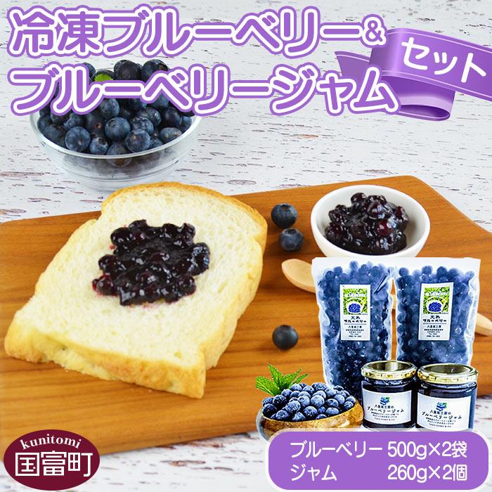 冷凍ブルーベリー(500g×2袋)&ブルーベリージャム(260g×2個)セット