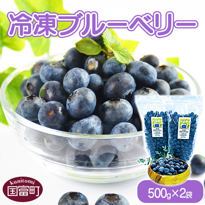 冷凍ブルーベリー(500g×2袋)