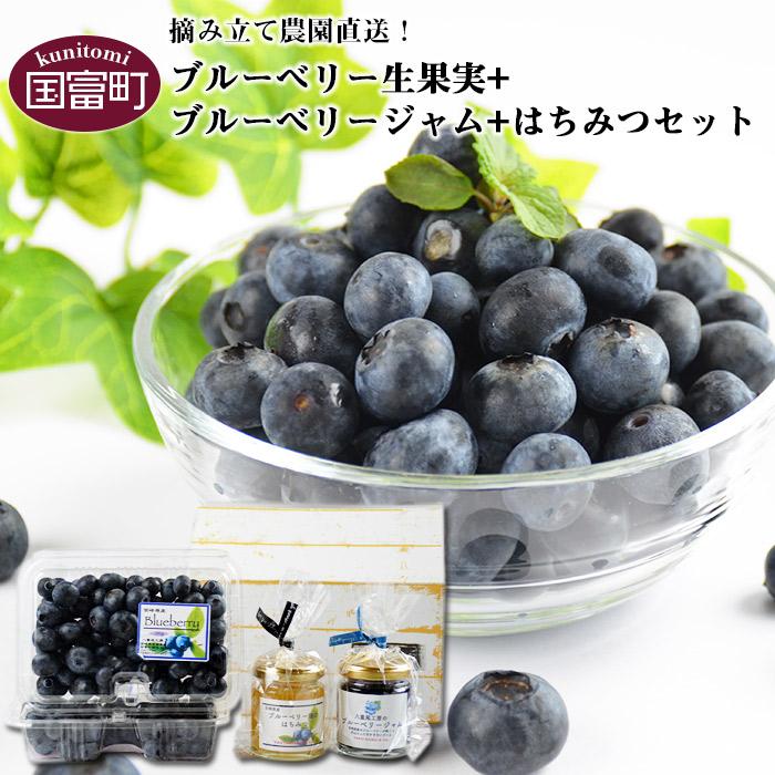 ブルーベリー生果実(250g×2パック)+ブルーベリージャム100g+はちみつ120gセット