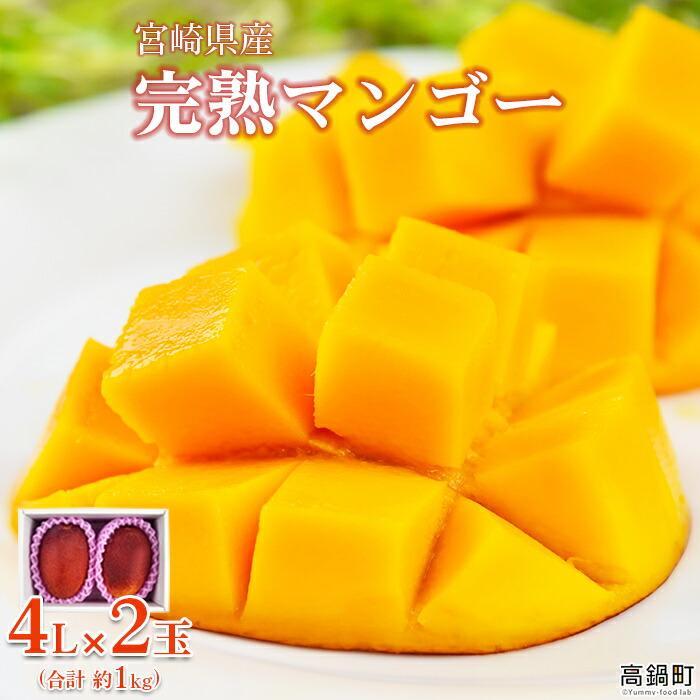 宮崎県産 完熟マンゴー 4L×2玉(合計 約1kg)