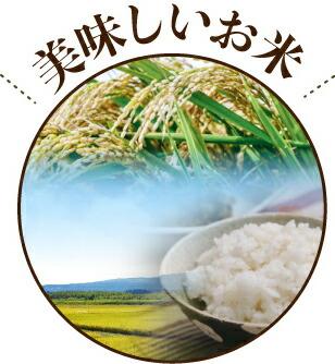 米カテゴリー