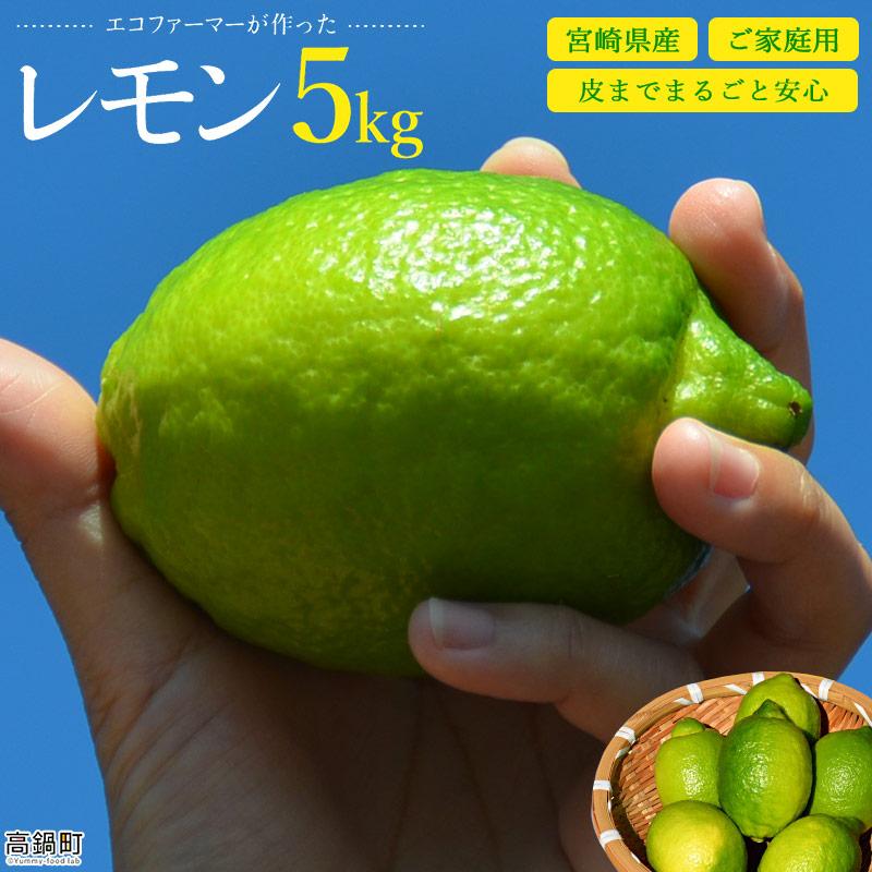 エコファーマーが作ったレモン5kg