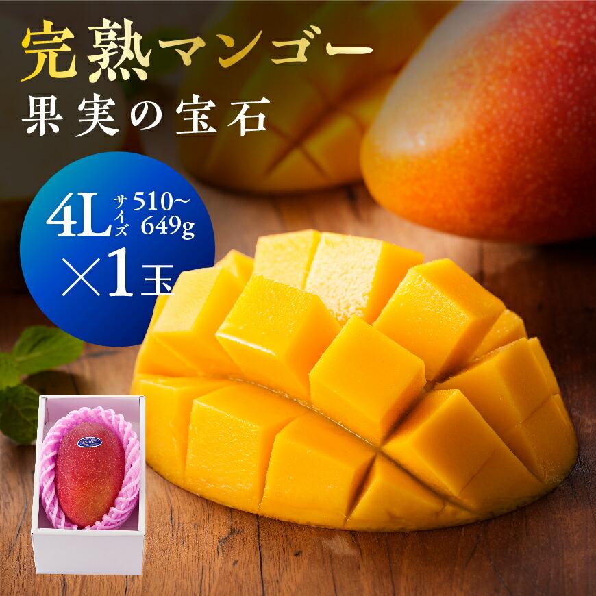 果実の宝石マンゴー4L1玉