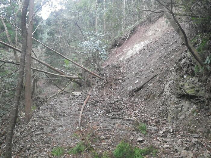 林地自然災害の増加も深刻な問題…