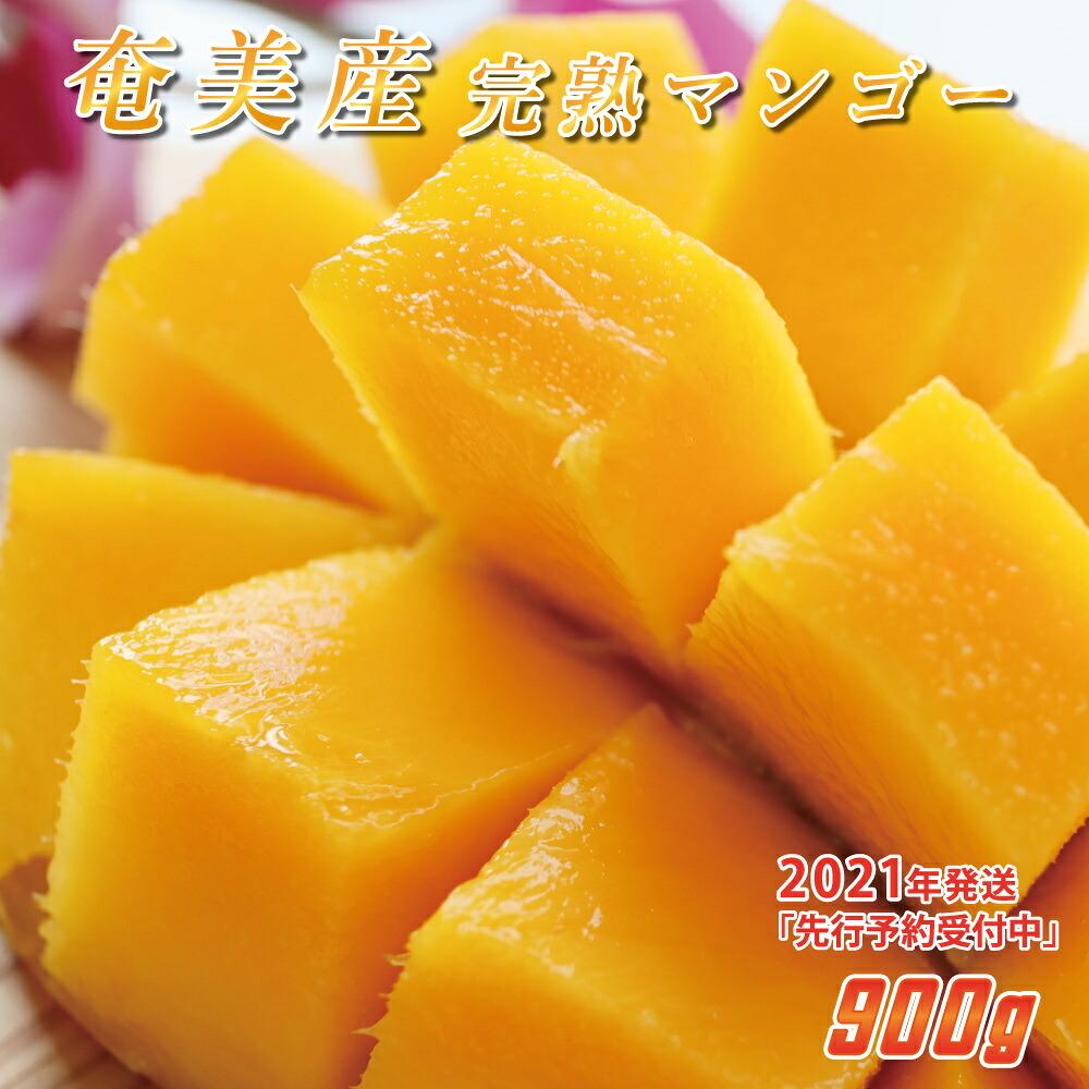奄美産マンゴー900g家庭用