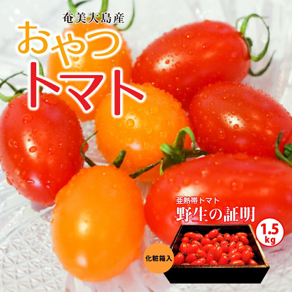 【2020年先行予約】亜熱帯トマト「野生の証明」<化粧箱入/ギフト向け>