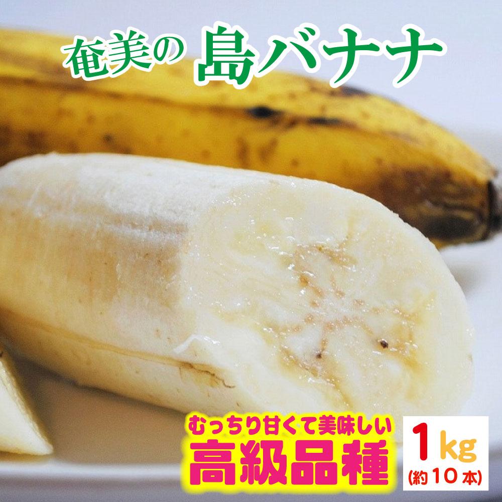 2020年発送分】奄美の島バナナ(小笠原種)1房約1kg(約10本)