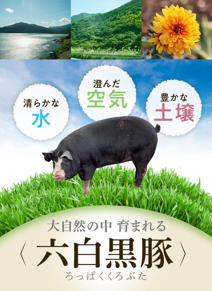 清らかな水 澄んだ空気 豊かな土壌 大自然の中育まれる 六白黒豚