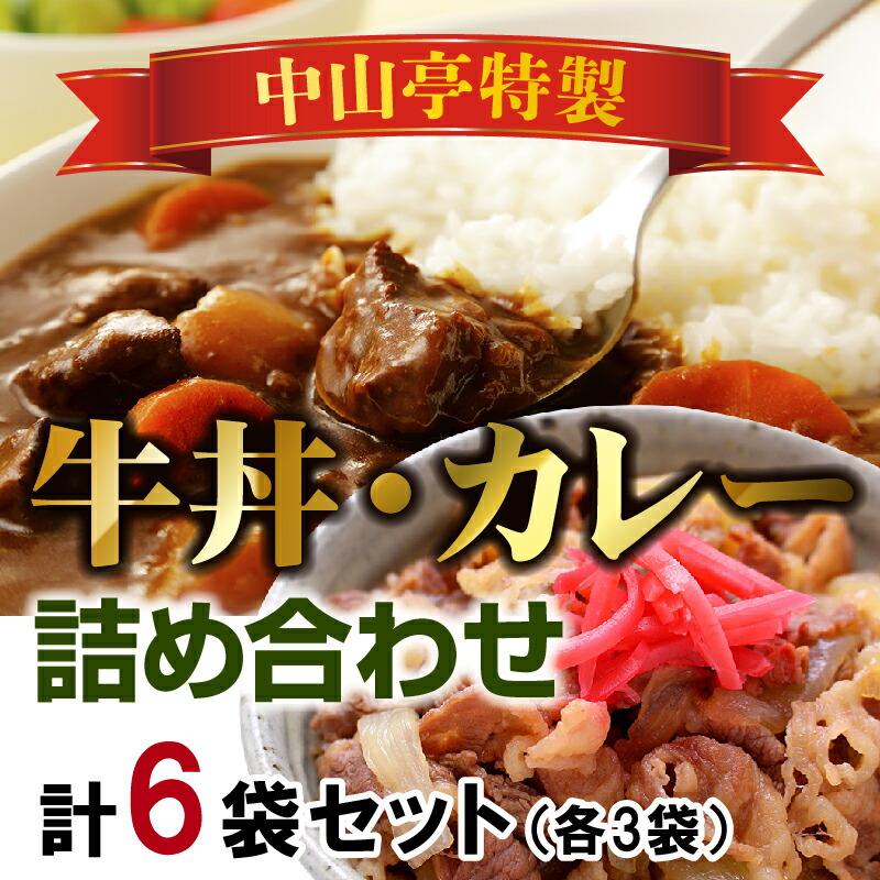 鹿児島県知名町 【ふるさと納税】中山亭特製牛丼・カレー詰め合わせA